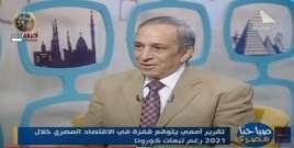 الدكتور محمد البنا يتحدث عن نمو الاقتصاد المصري وعلاقته بتوفير فرص العمل (فيديو)